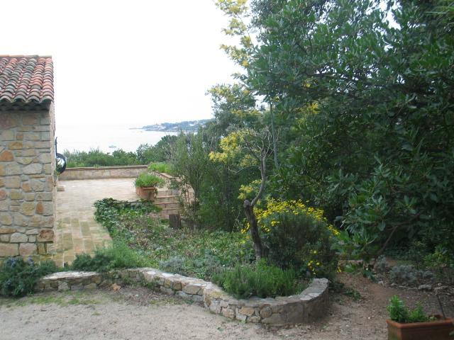The view from the door of the garden